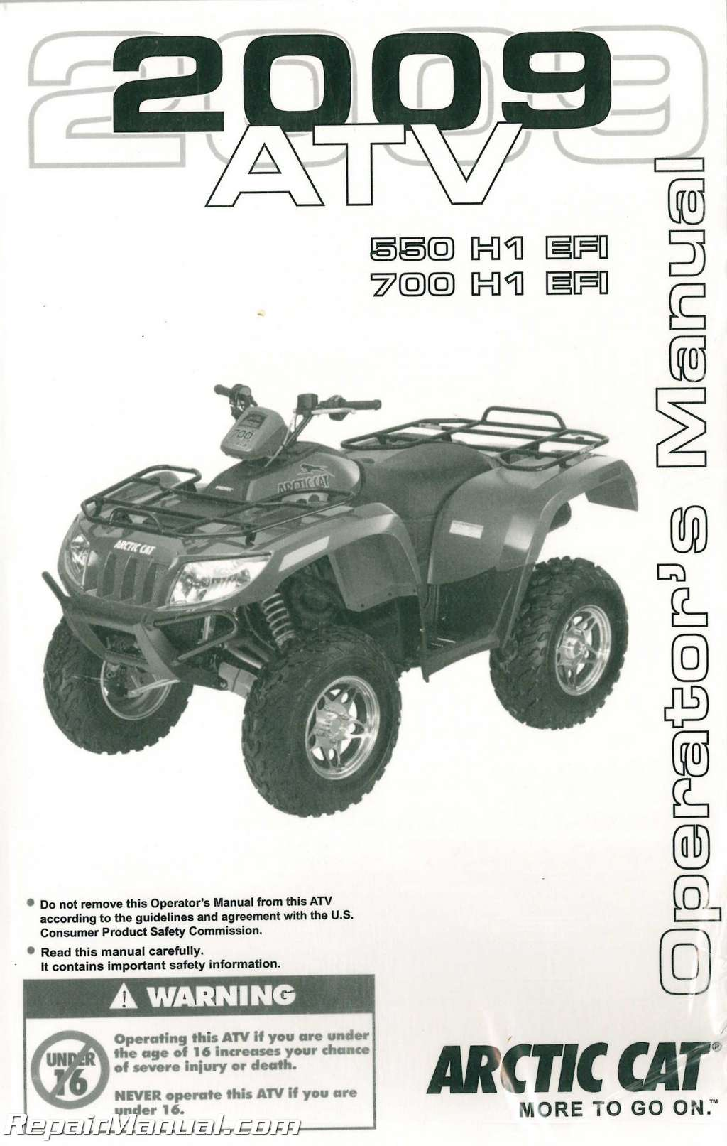 Arctic Cat  Efi Service Manual