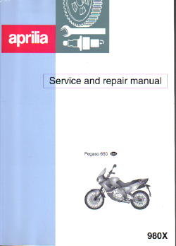 Official 1997-2000 Aprilia Pegaso Service Manual