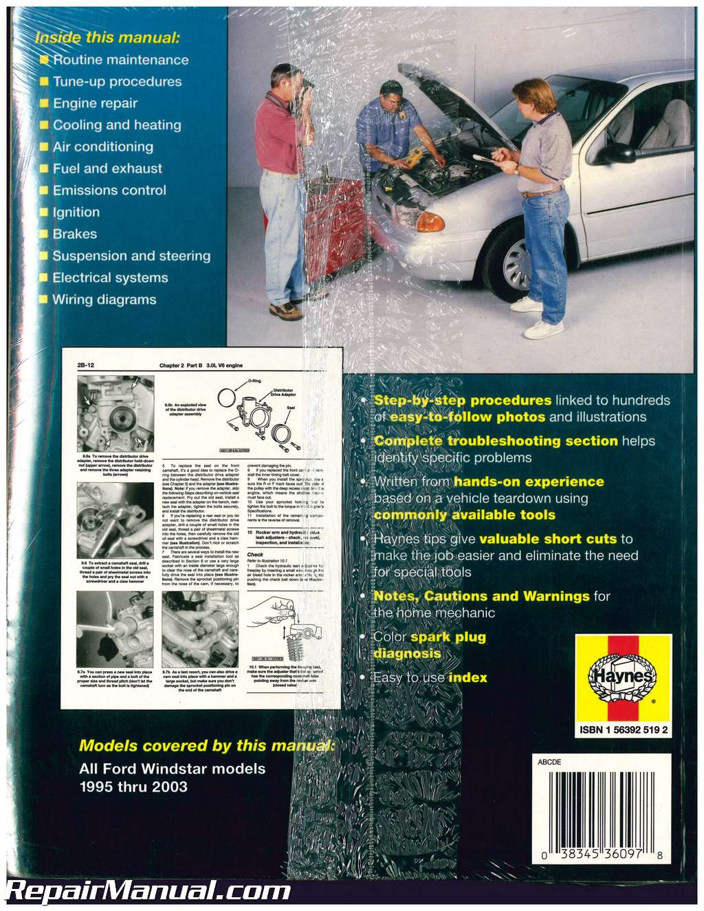 Haynes 1995