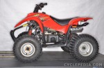 Cyclepedia.com Polaris 50 and 90 Youth ATVs Online Service Manual 2001 - 04